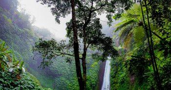 Viagem a São Tomé